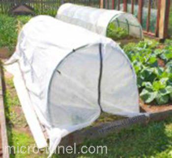 manta térmica en cultivo de hortalizas